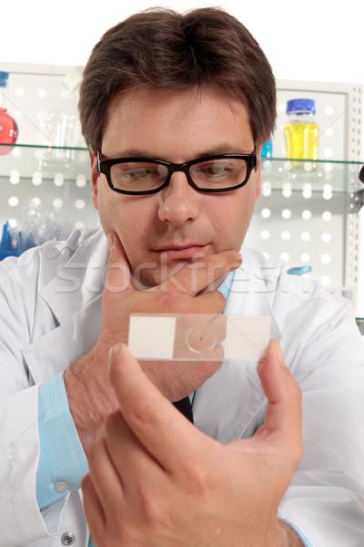 Tudós mikroszkóp csúszda biológus egyéb orvosi Stock fotó © lovleah