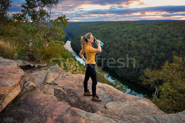 Scenico blu montagna Australia montagna Foto d'archivio © lovleah
