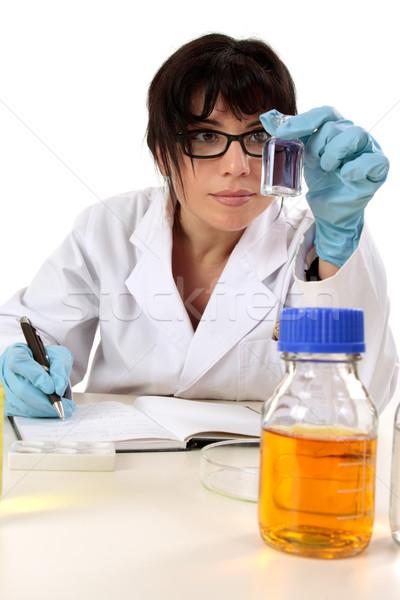 Investigador trabalhar feminino pesquisa cientista sessão Foto stock © lovleah