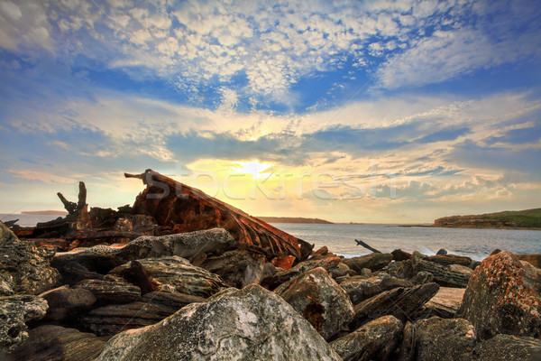 Rusted shipwreck at Botany Bay Sydney Australia Stock photo © lovleah