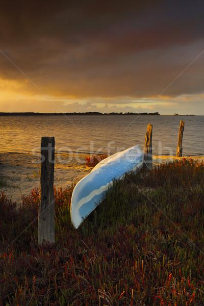 Golden  light on blue canoe sitting on bed of red fire sticks Stock photo © lovleah