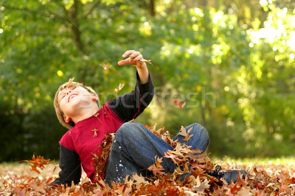 Zuhan ősz ősz boldog játékos gyermek Stock fotó © lovleah