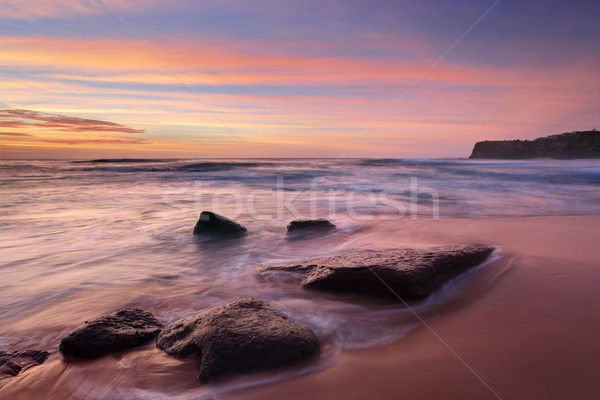 The colours of summer at Bungan beach Australia Stock photo © lovleah