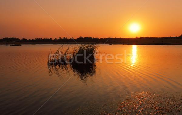 Hot sun rising over Boorooberongal Lake Stock photo © lovleah