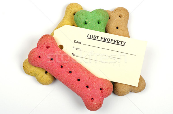 Stockfoto: Hond · biscuits · verloren · eigendom · tag · label