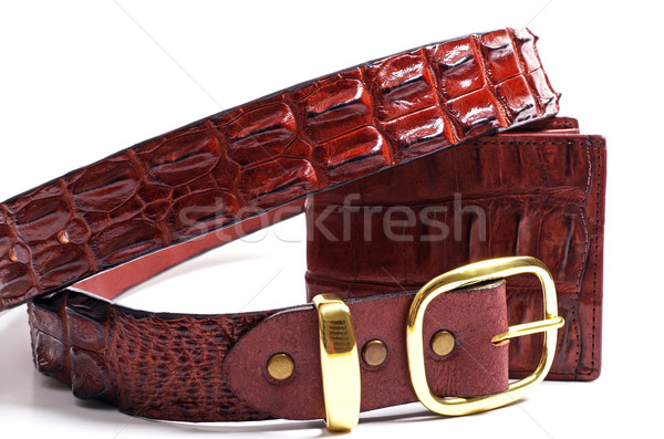крокодила кожа продукции белый текстуры фон Сток-фото © luapvision