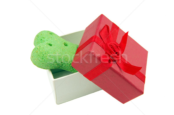 dog biscuit and gift box Stock photo © luapvision