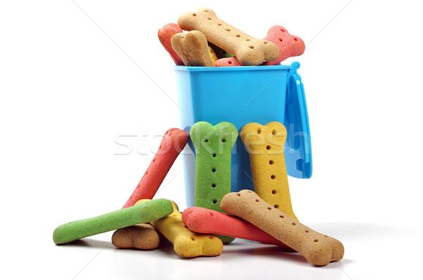 Köpek bisküvi etrafında mavi Stok fotoğraf © luapvision