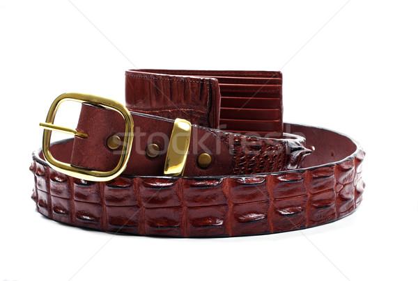 крокодила кожа пояса бумажник белый Сток-фото © luapvision