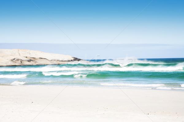Plaży fale duży Błękitne niebo Zdjęcia stock © lubavnel