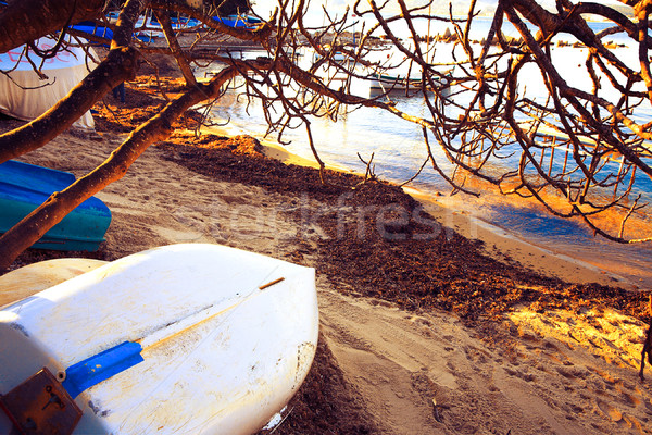 Boats beached in France Stock photo © lubavnel