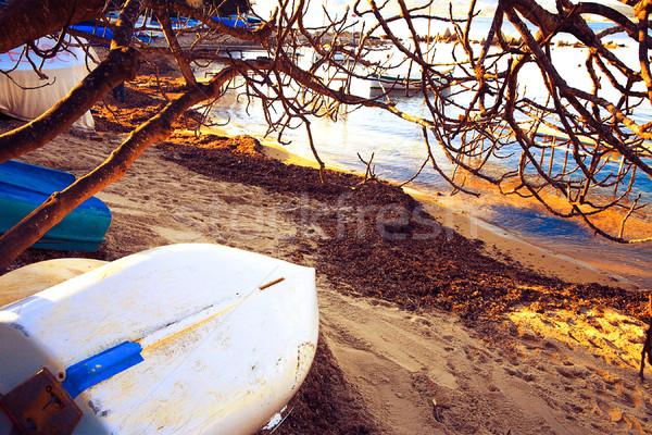 ボート フランス 砂 小 ビーチ ストックフォト © lubavnel