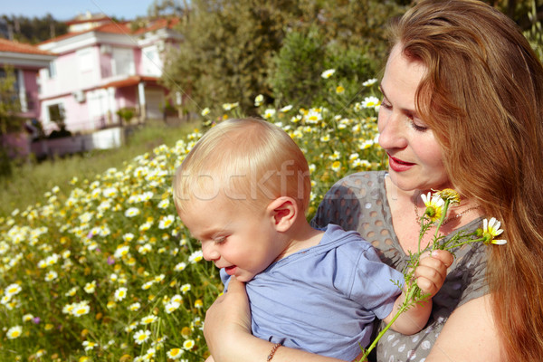 grandmother and grandson in daisies field Stock photo © lubavnel