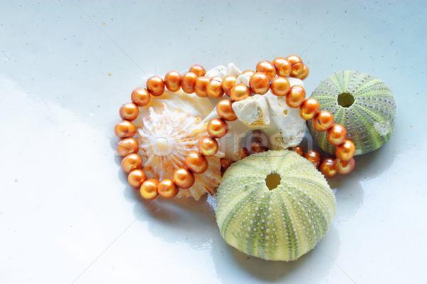 Sea shells and pearls Stock photo © lubavnel