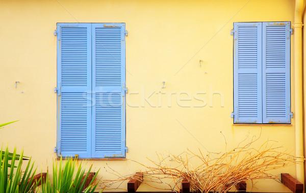 Nagy kicsi zsalu világoskék zárva fal Stock fotó © lubavnel