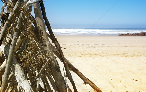 Drift wood stacked on the beach Stock photo © lubavnel