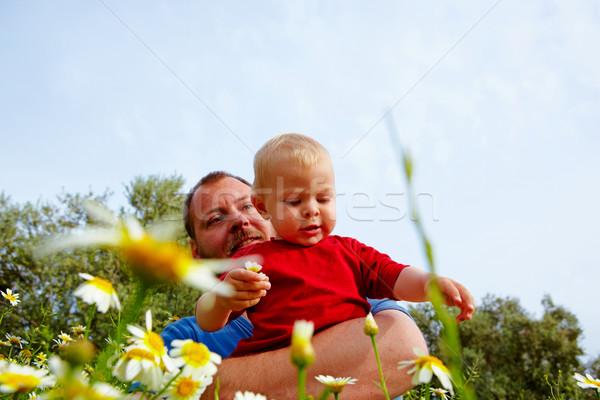 Stock photo: father and son in flowers