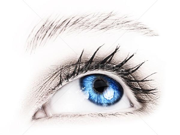 Blue eye of a woman. Stock photo © lubavnel