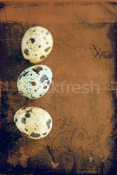 grunge quail easter eggs. Stock photo © lubavnel