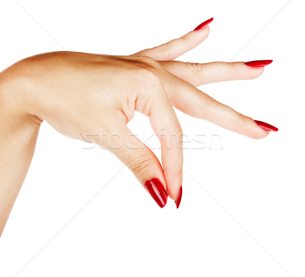 hands of woman with red manicure Stock photo © lubavnel