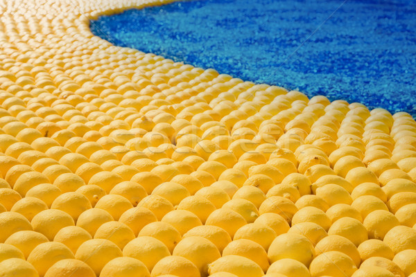 display of ripe lemon Stock photo © lubavnel