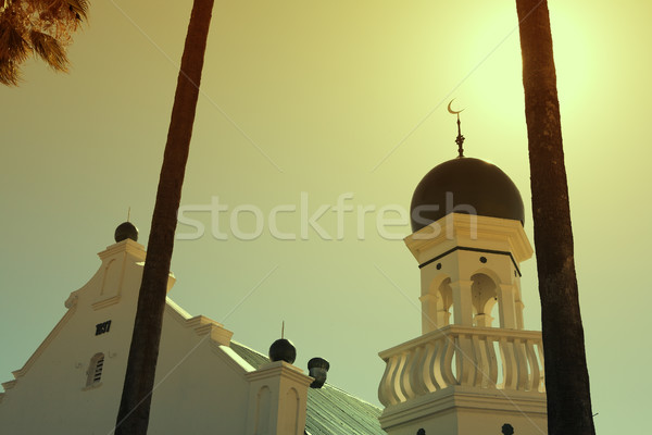 White mosque Stock photo © lubavnel