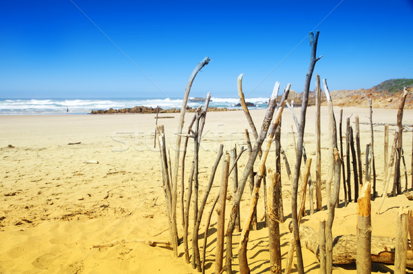 Stretch of beach in Knysna, South Africa.Stretch of beach in Knysna, South Africa.Stretch of beach i Stock photo © lubavnel