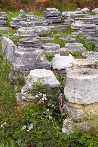 columns in Ephesus, Turkey Stock photo © lubavnel