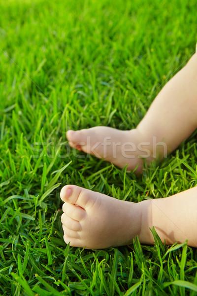 Baby on grass. Stock photo © lubavnel