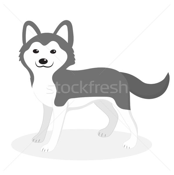 Husky собака икона Cartoon стиль Сток-фото © lucia_fox