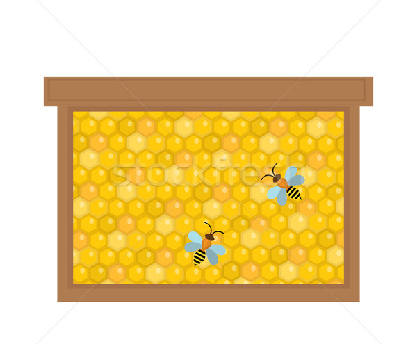 Honeycomb in wooden frame icon, flat style. Isolated on white background. Vector illustration, clip- Stock photo © lucia_fox