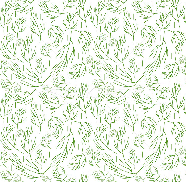Herbs seamless pattern. Dill endless background, texture. Vegetable backdrop. Vector illustration. Stock photo © lucia_fox