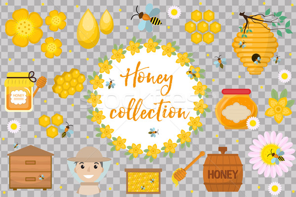Honey collection. Beekeeping set of objects isolated on white background. Apiculture kit of design e Stock photo © lucia_fox
