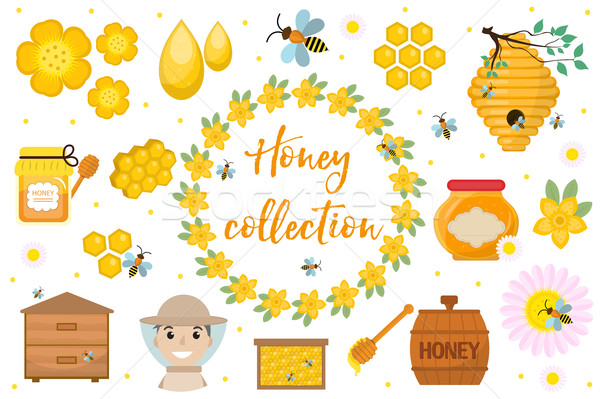 Honey collection  Beekeeping set of objects isolated on white