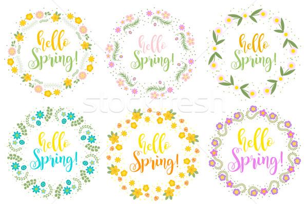 Hola primavera establecer floral marco texto Foto stock © lucia_fox