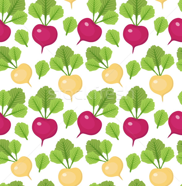 Radish seamless pattern. Red and white radishes endless background, texture. Vegetable . Vector illu Stock photo © lucia_fox