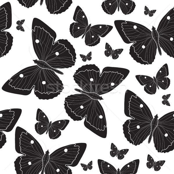 Foto stock: Elegante · preto · borboleta · esboço · preto · e · branco