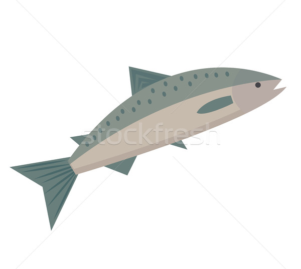 Salmon icon flat style. Saltwater fish isolated on white background. Vector illustration, clip art. Stock photo © lucia_fox