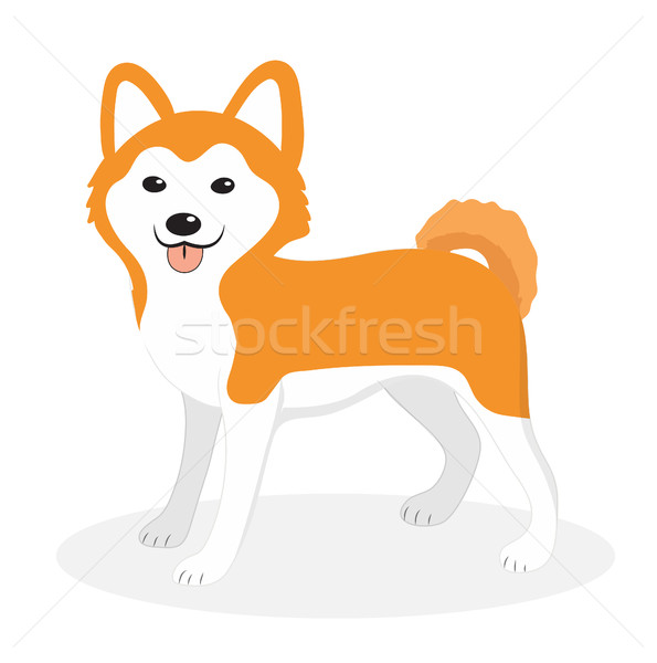 Akita Inu breed dog icon, flat, cartoon style. Cute puppy isolated on white background. Vector illus Stock photo © lucia_fox