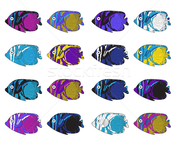Fish colorful set. Hand drawing. Vector illustration. Stock photo © lucia_fox