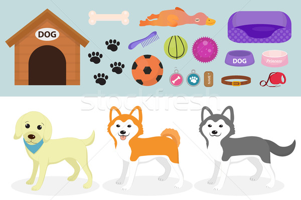 Stock photo: Dogs stuff icon set with accessories for pets, flat style, isolated on white background. Domestic an