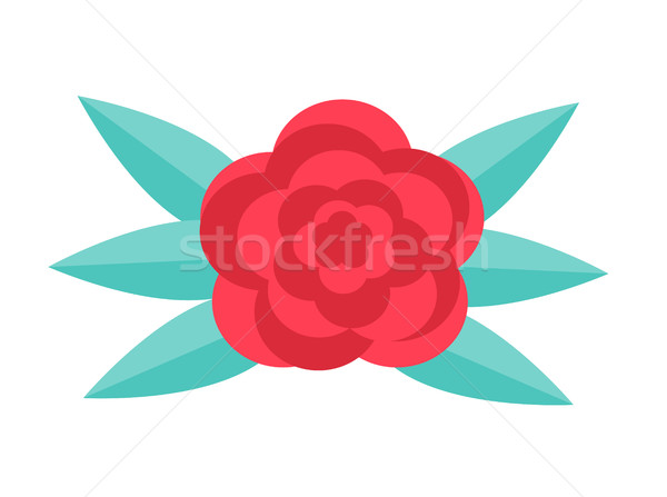 Red rose, flat design. Isolated on white background. Vector illustration, clip art. Stock photo © lucia_fox
