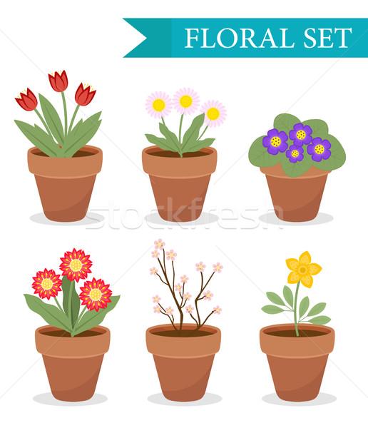 Stock fotó: Virágcserép · különböző · virágok · szett · stílus · virágcserép