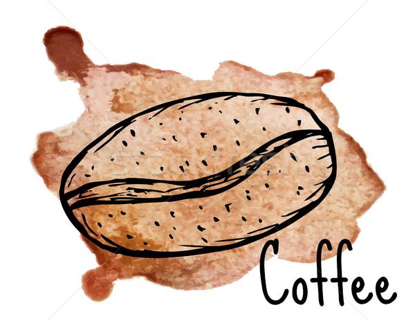 Café grão esboço aquarela projeto fundo Foto stock © lucia_fox