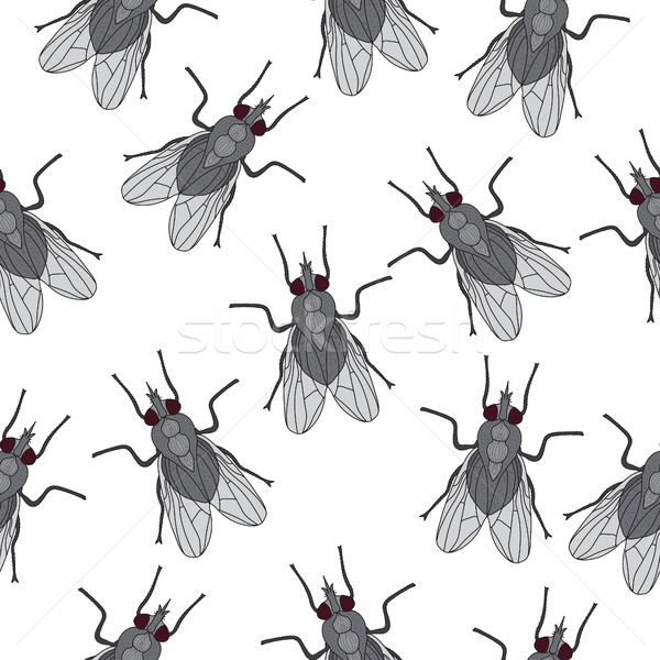 Fly insect seamless texture. Fly wallpaper, background. Vector illustration Stock photo © lucia_fox