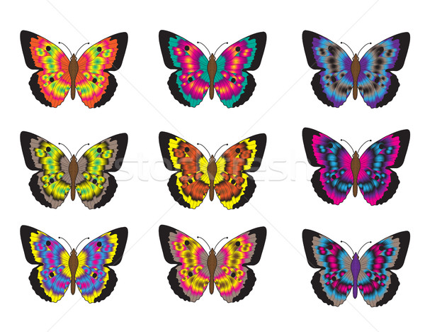 Set of multicolored butterflies on a white background, a collection of butterflies. Vector illustrat Stock photo © lucia_fox