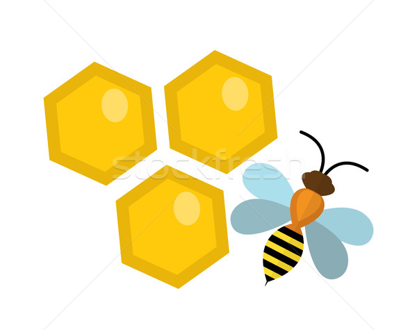 Honeycomb and bee icon, flat style. Isolated on white background. Vector illustration, clip-art. Stock photo © lucia_fox