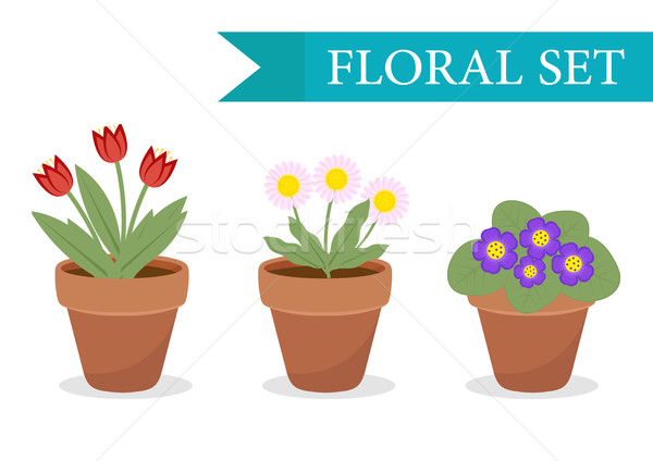Stock photo: Flower pot with different flowers set, flat style. Flowerpot Collection isolated on white background