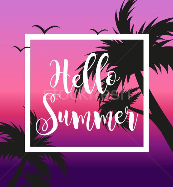 Hallo zomer sjabloon poster witte frame Stockfoto © lucia_fox