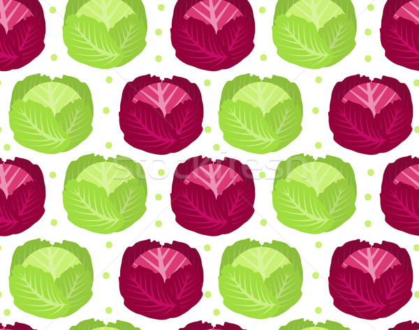 Cabbage seamless pattern. Red  endless background, texture. Vegetable . Vector illustration Stock photo © lucia_fox